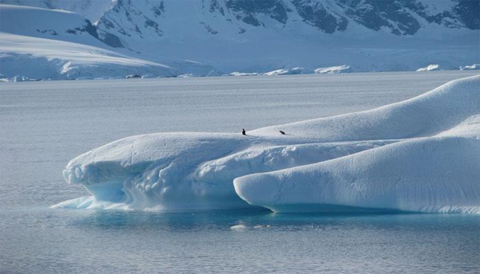 अंटार्कटिका में 'मैनहट्टन' से भी बड़ा बर्फीला चट्टान टूटने की कगार पर
