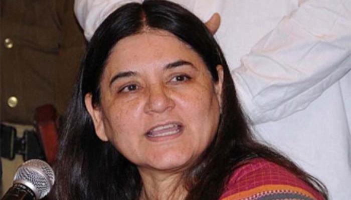 बिहार में नीलगायों की हत्या मामला: पर्यावरण मंत्रालय से नाराज हैं केंद्रीय मंत्री मेनका गांधी
