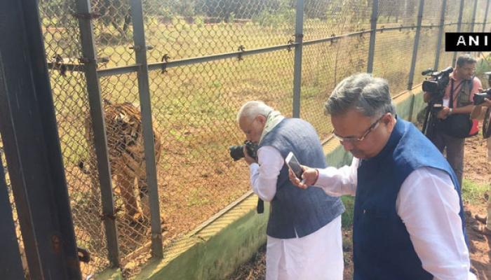 जब PM मोदी का हुआ बाघ से आमना-सामना, कैमरे से खींची तस्वीर, Watch video