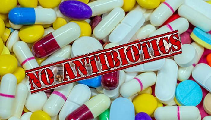 ऑपरेशन के बाद एंटीबायोटिक्स के इस्तेमाल से बचें : डब्ल्यूएचओ