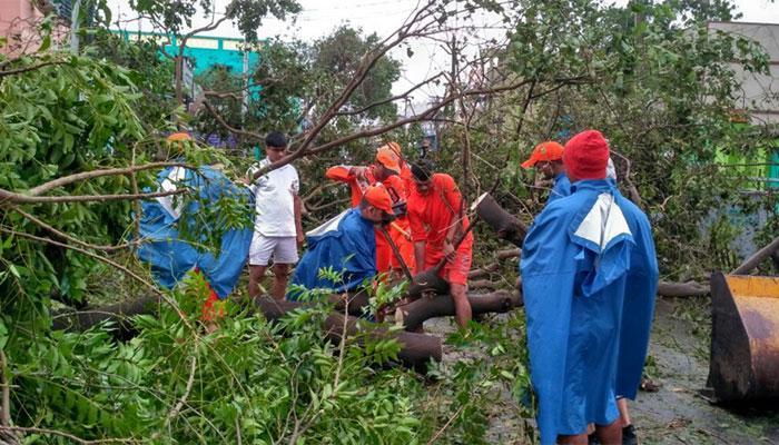 'वरदा' तूफान ने तमिलनाडु में मचाई तबाही, 10 लोगों की मौत