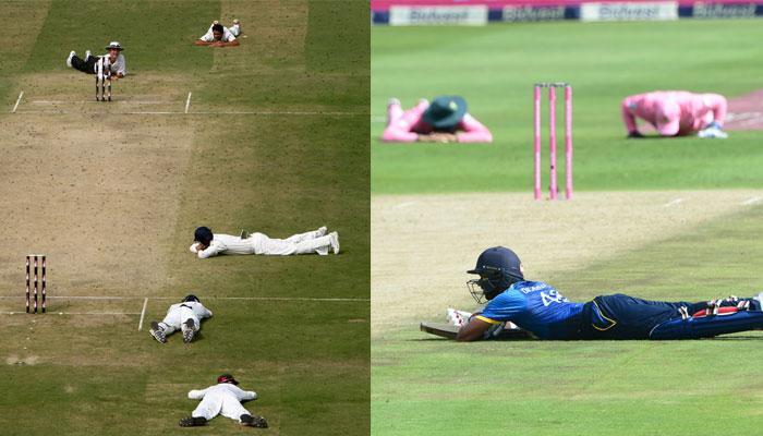 जब क्रिकेट मैच के बीच मैदान पर मधुमख्खियों ने किया हमला!  video में देखें आगे क्या हुआ?