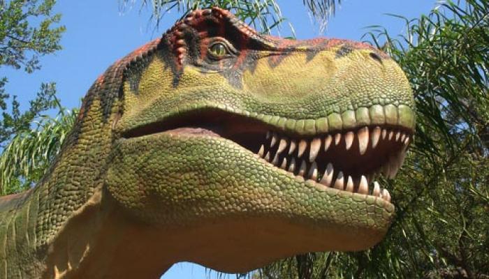 भारत में 19 करोड़ साल पहले थे 20 तरह के डायनासोर