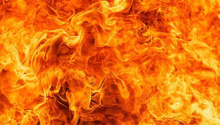 पुर्तगाल के जंगलों में लगी भीषण आग, 62 लोगों की मौत, कई अन्य झुलसे