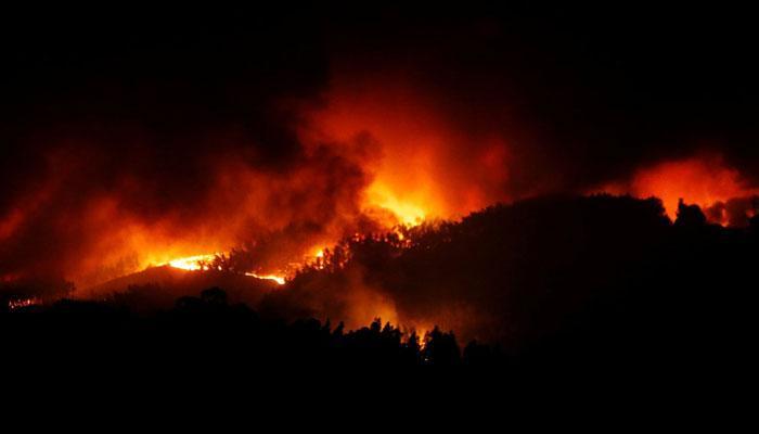 पुर्तगाल में आग लगने से 64 की मौत, हालात पर काबू पाने के लिए लगाए गए विमान
