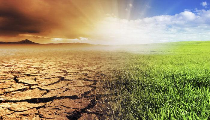 विश्व बैंक ने कहा, जलवायु परिवर्तन के ख़िलाफ़ लड़ाई में भारत निकल रहा सबसे आगे