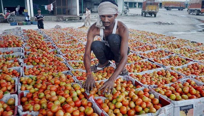 झारखंड: टमाटर हुआ गुस्से से 'लाल', कई सब्जियां 80-100 रुपये प्रति किलो