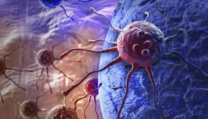 कैंसर को बढ़ा सकती हैं फैट सेल्स