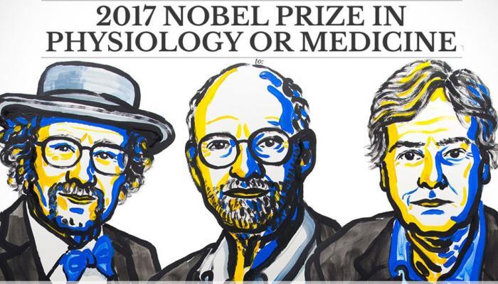 नोबेल मेडिसिन पुरस्कार: शरीर की जैविक घड़ी इस तरह करती है दिन-रात काम, जानें 5 बातें