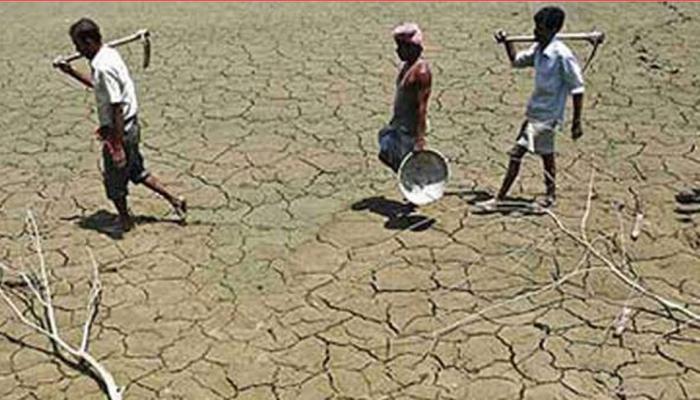 ओडिशा: फसल में लगे थे कीड़े, सरकार ने नहीं सुनी समस्या, किसान ने की आत्महत्या