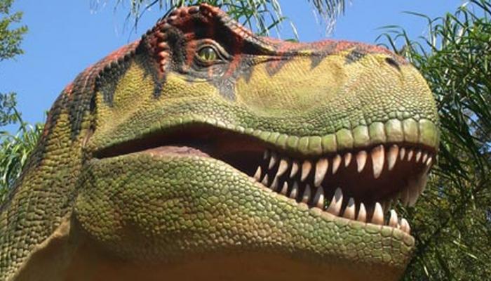 6 करोड़ 66 लाख साल पहले इसी धातु ने किया था डायनासोर को खत्म, अब कैंसर की बारी