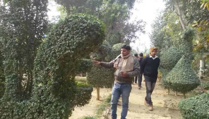 Interesting pics of a garden in Jaunpur where Trishul Shivling Ganesh BajrangBali made by tree