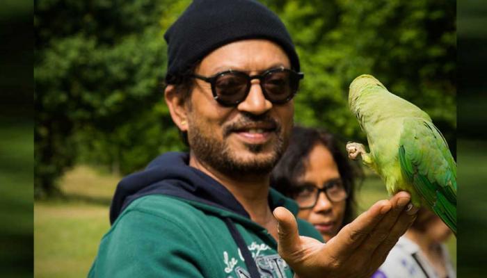 इरफान खान की बीमारी को लेकर उड़ रही हैं अफवाह, लेकिन यहां पढ़ें सच