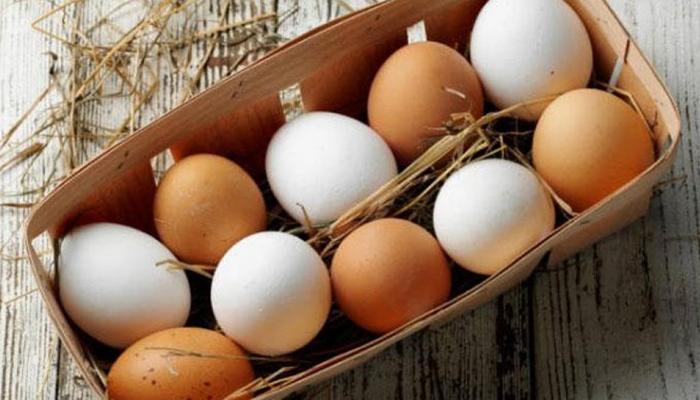 इन 5 तरीकों से पहचानें, आपका अंडा असली है या नकली