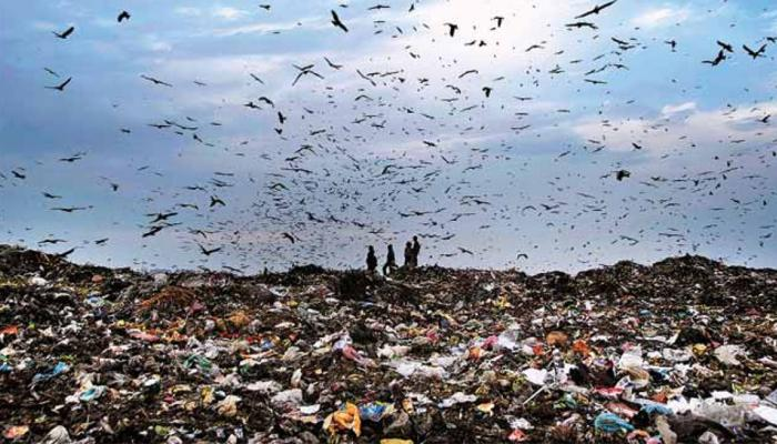 Top news of hindi and english newspaper garbage increased in India after Swachh Bharat Mission