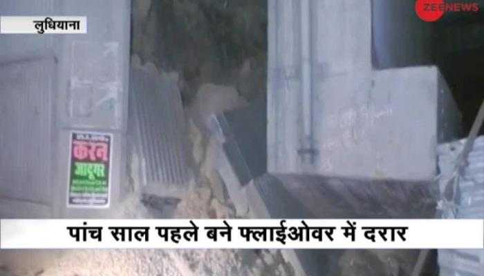 Rats wreak havoc in Ludhiana, reason behind flyover wall collapse