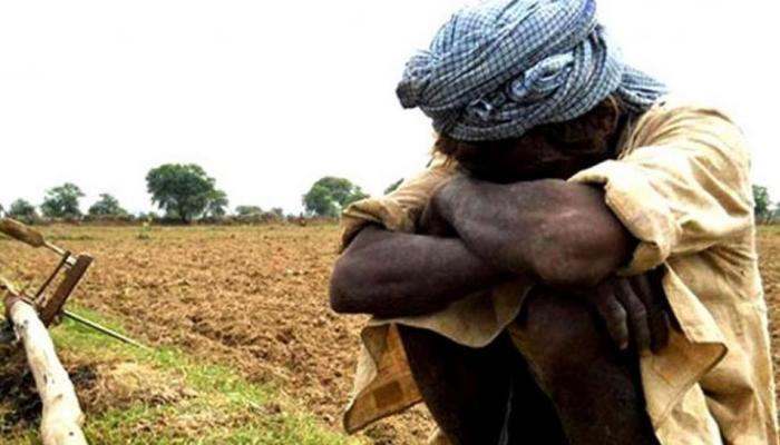 मध्यप्रदेश: खेती में नंबर 1 राज्य में किसानों की दुर्दशा कैसे बनी चुनावी मुद्दा