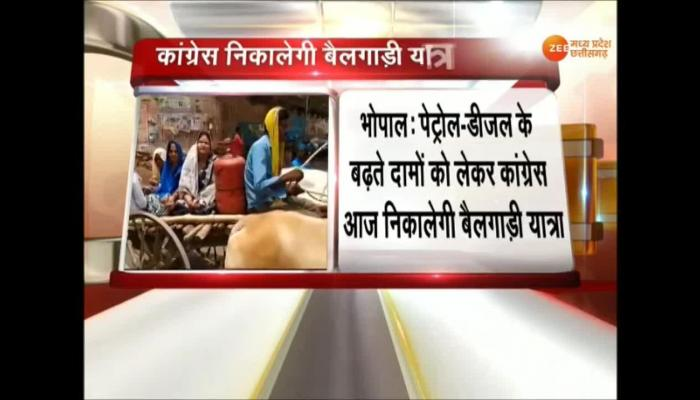 Madhya Pradesh : Congress Bullock cart Rally Against Petrol Diesel Price Hike In Bhopal