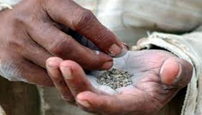 बिहार में शराबबंदी के बाद खैनी पर प्रतिबंध लगाने की तैयारी, केंद्र से किया अनुरोध