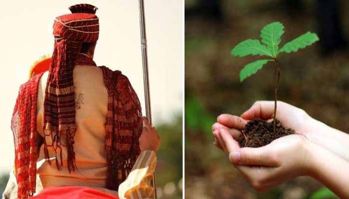 दूल्हे ने 'दहेज' में मांगे 1000 पौधे, बारातियों को मिला अनोखा रिटर्न गिफ्ट