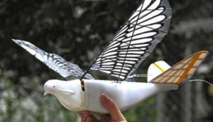 'चालाक' चीन ने बनाया चिड़िया की तरह का ड्रोन, भारत में ताकझांक की तैयारी