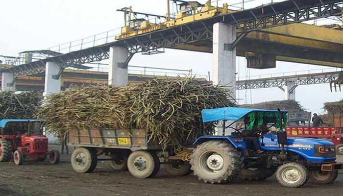 अगले साल भी कम रहेंगे चीनी के दाम, 350-355 लाख टन होगा चीनी का उत्पादन