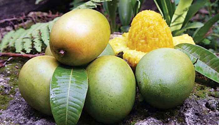 Mango protects us from diabetes and cancer