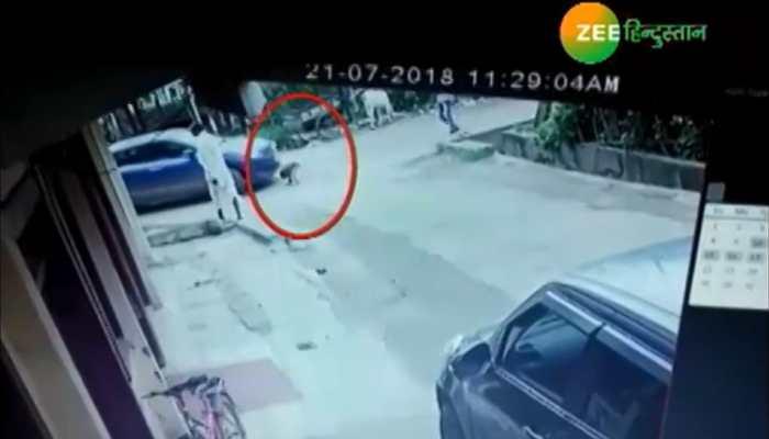रायसेनः 3 साल की मासूम के ऊपर से निकल गई कार, फिर भी सुरक्षित
