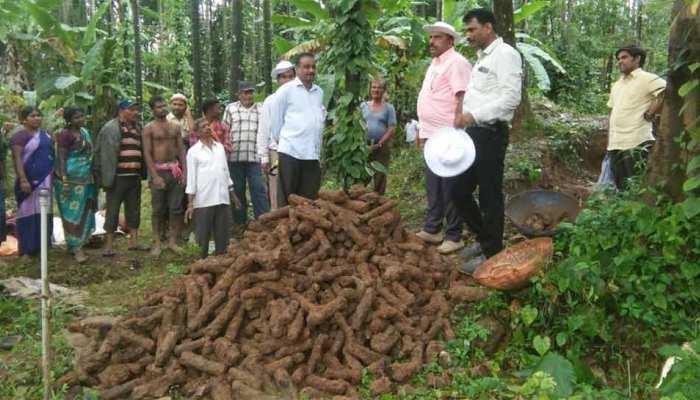 कर्नाटक में खुदाई के दौरान मिले टीपू सुल्तान काल के करीब 1,000 'रॉकेट'
