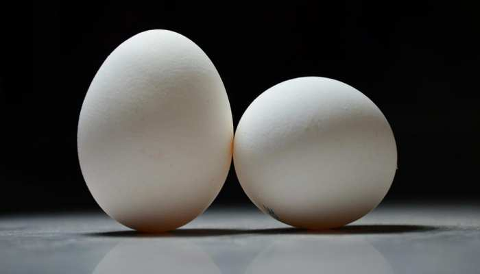 Benefits of Eating white egg on daily basis