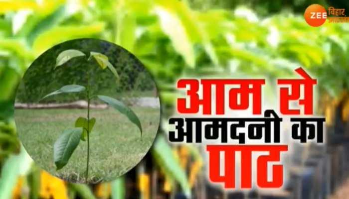 आम से आमदनी का पाठ, किसानों की आय बढ़ाने में जुटी रघुवर सरकार