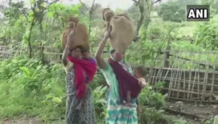 बलरामपुर: सड़क न होने से परेशान ग्रामीण, पहाड़ों और जंगल को पार कर लाते हैं राशन