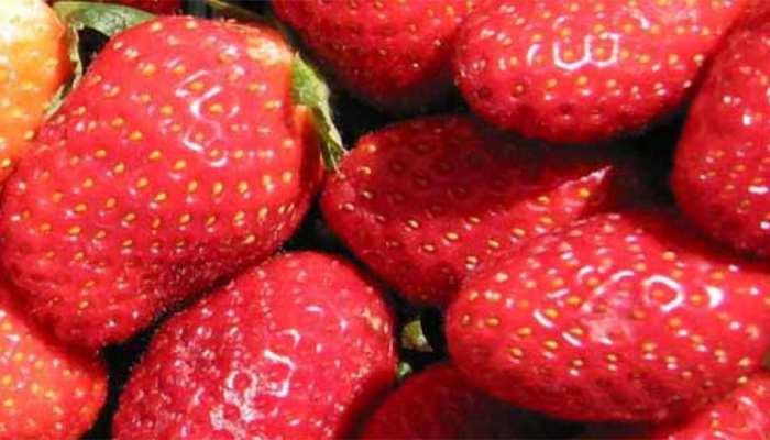 ऑस्ट्रेलिया में सुई वाली स्ट्रॉबेरी की अफवाह से दहशत में लोग, जांच के आदेश