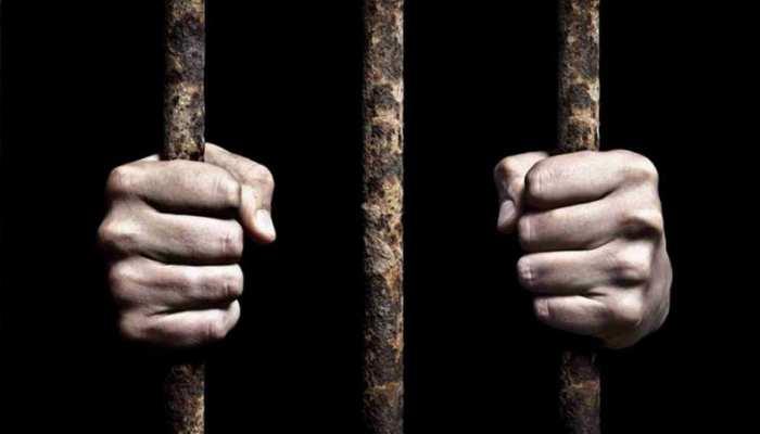 अमेरिका में पकड़ा गया 'इमरान खान', अदालत ने सुना दी तीन साल की सजा