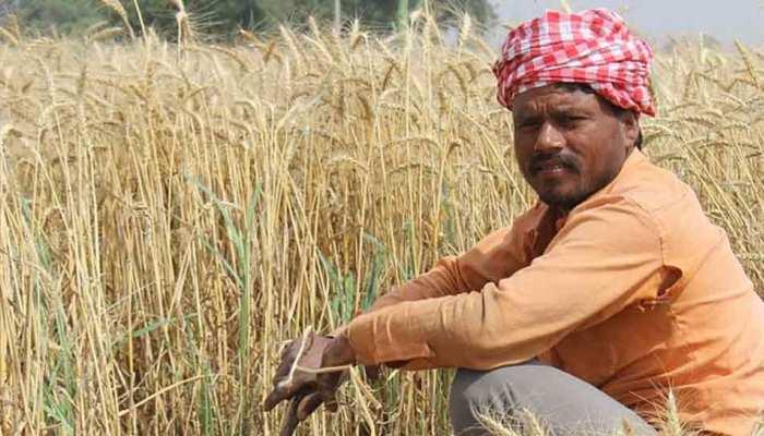 किसानों की आय दोगुनी करने के लिए मोदी सरकार अगले हफ्ते ला सकती है नई पॉलिसी