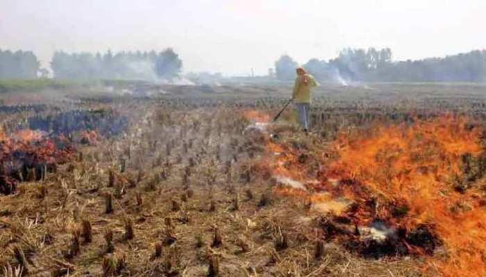 तो इस बार भी जलेगी पराली, प्रदूषण रोकने में नाकाम होगी सरकार!