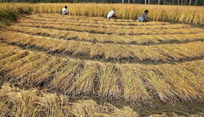 अच्छी खबरः क्रय केंद्र पर किसान जितना धान लाएंगे, सब खरीदेगी बिहार सरकार