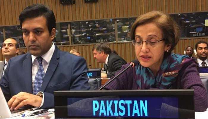 पाकिस्तान 19वें सार्क समिट की मेजबानी के लिए पूरी तरह तैयार : विदेश सचिव जंजुआ