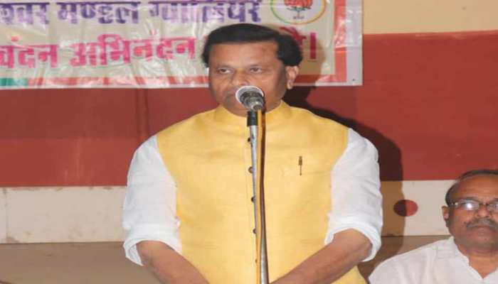मध्य प्रदेश के इस BJP नेता ने अपनी ही पार्टी के नेताओं पर फोड़ा हार का ठीकरा