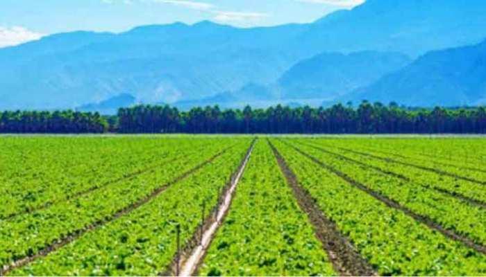 परंपरागत खेती से ज्यादा जैविक उत्पाद बिगाड़ रहे हैं जलवायु की सेहत : अध्ययन