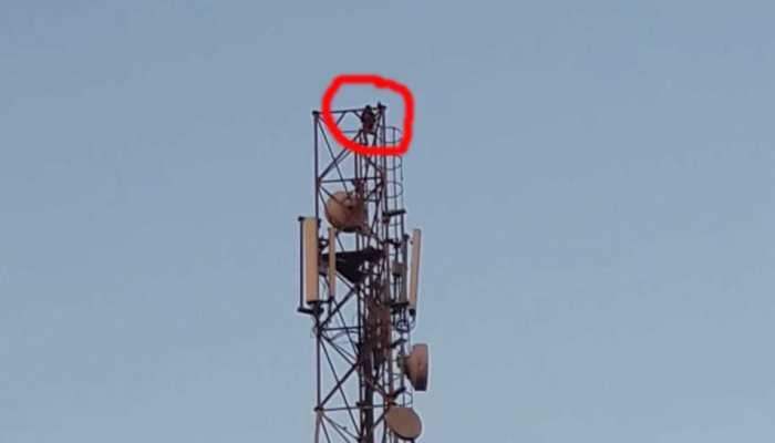 मोबाइल टावर पर चढ़ी लड़की, बोली- ब्वॉयफ्रेंड से शादी कराओ, नहीं तो मैं अपनी जान दे दूंगी