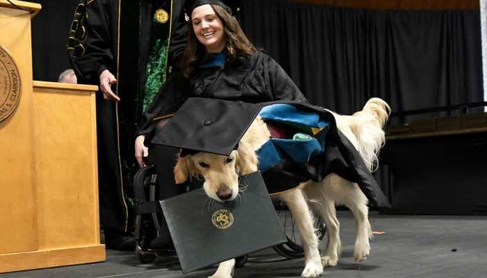 महिला के साथ कुत्ते को भी मिली डिग्री, दरवाजा खोलने, लाइट जलाने और करता था ये काम