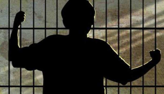 4 साल में पाकिस्तान ने रिहा किए 1,557 भारतीय कैदी, विदेशी जेलों में बंद हैं सैकड़ों भारतीय