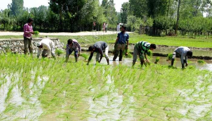 अब इस पार्टी ने किसानों से किया बड़ा वादा, सत्ता में आए तो मुफ्त देंगे बिजली