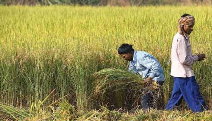 राजस्थान: कर्जमाफी के लिए उत्तर प्रदेश सहित 9 राज्यों का पैटर्न जानेगी गहलोत सरकार