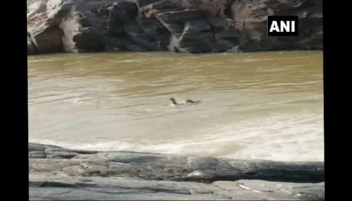ओडिशा: छात्र ले रहा था सेल्फी, अचानक झरने में गिरकर बह गया