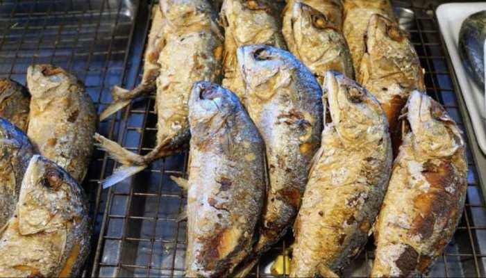 सावधान: मछली खाने से हो सकता है कैंसर, इस राज्य में लग सकता है प्रतिबंध