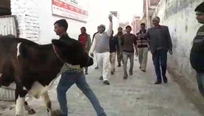 अलीगढ़ः नौशाद खां, जिन्होंने अपनी 2000 वर्गमीटर जमीन पर बनाया बेसहारा गायों के लिए बसेरा