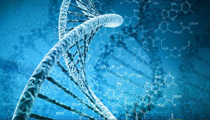 लंदनः वैज्ञानिकों ने तैयार किया नया DNA उपकरण, चलेगा पूर्वजों का पता