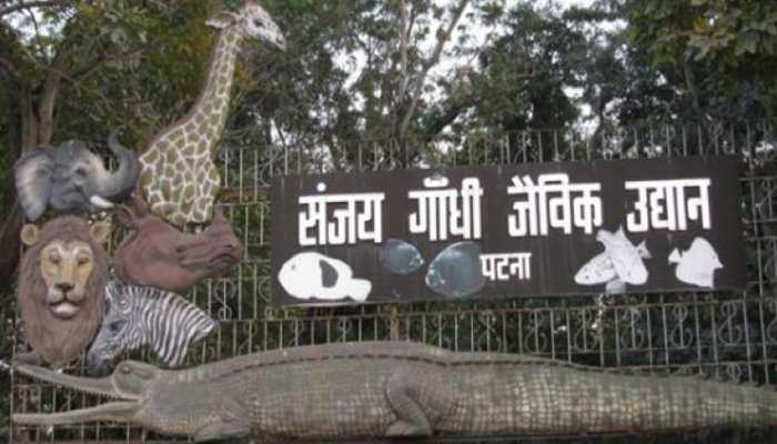 बिहारः संजय गांधी जैविक उद्यान के पक्षियों के नमूनों में नहीं मिले बर्ड फ्लू के लक्षण